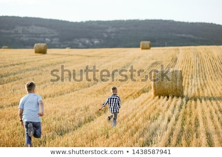Twee jongens hooi natuur kind boerderij Stockfoto © IS2