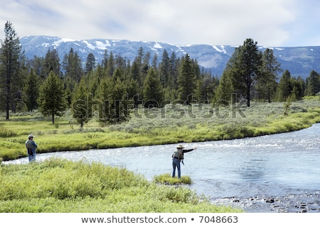 Woman in stream with fishing net Stock photo © IS2