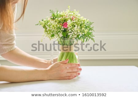 Woman holding a vase with fresh pink roses Stock photo © artjazz