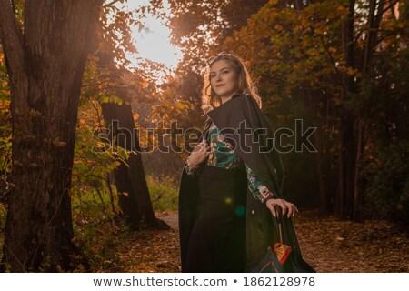 Mooi meisje kameleon mooie jonge vrouw exotisch make Stockfoto © svetography