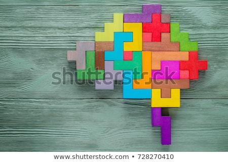 Human Brain Shape Business Concept Background Stock photo © alexaldo