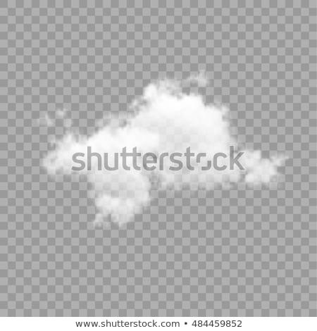 şeffaf beyaz vektör bulut dizayn doğal Stok fotoğraf © kostins