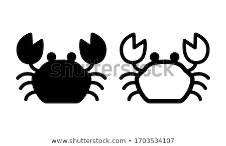 Crab isolated. Ocean cancer. Marine animal Vector illustration Stock photo © popaukropa