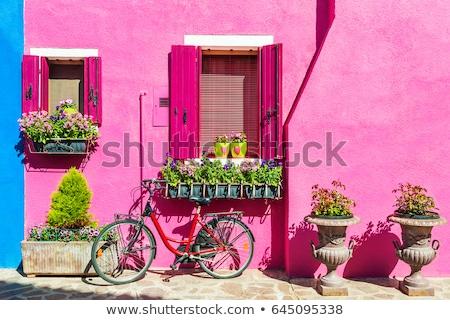 houses in summer burano stock photo © givaga
