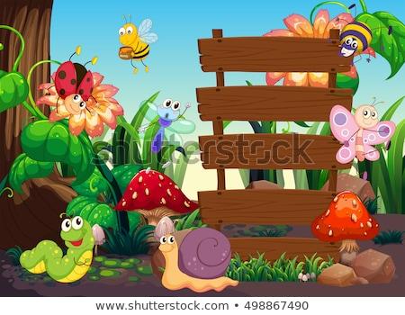 Veel insecten rond houten borden illustratie Stockfoto © colematt