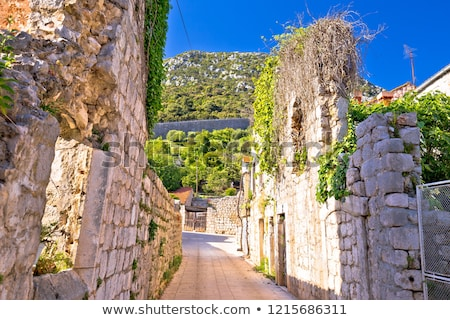town of ston street old historic ruins view stock photo © xbrchx