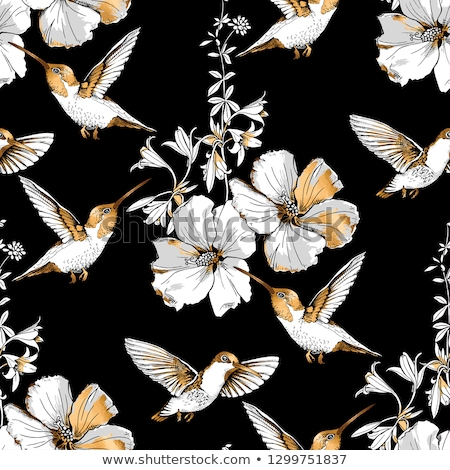 Сток-фото: Seamless Pattern With Exotic Tropical Birds And Feathers