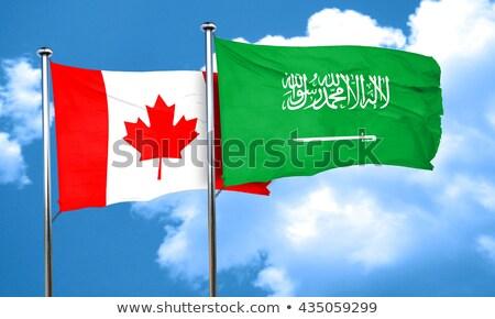 Twee vlaggen Canada Saoedi-Arabië geïsoleerd Stockfoto © MikhailMishchenko