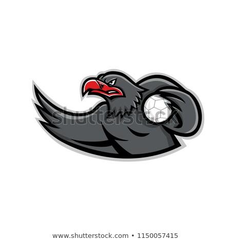 Águia handebol jogador mascote ícone ilustração Foto stock © patrimonio