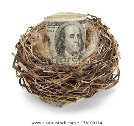 Pension Egg Nest On Hundred Dollar Note Stock photo © AndreyPopov