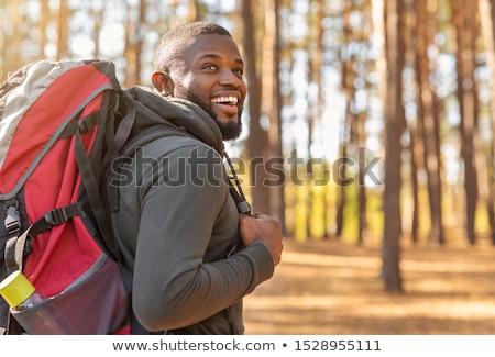 caminante · hombre · senderismo · forestales · masculina · mirando - foto stock © boggy