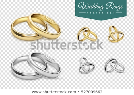 Golden With Silver Element Wedding Rings Vector Stock photo © pikepicture