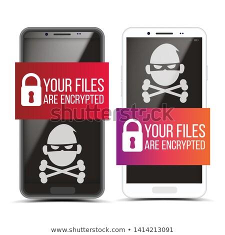 Smartphone piraat malware ingesteld vector hangslot Stockfoto © pikepicture