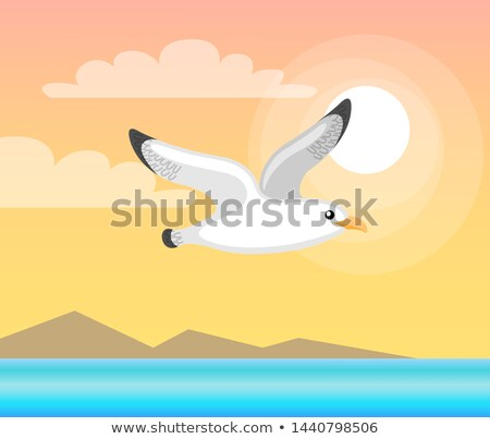 Summer Papercard with Flying Seagull, Sea Vector Stock photo © robuart