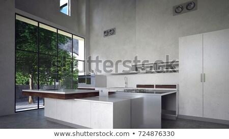 интерьер современных кухне большой удобный Сток-фото © pressmaster