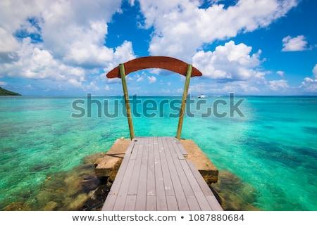 Fából készült móló trópusi tengerpart francia Polinézia utazás Stock fotó © dolgachov