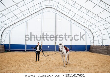 Young sportswoman holding bridles of white racehorse moving round sandy arena Stock photo © pressmaster