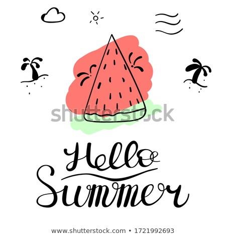 Hello nyár feketefehér utazás szalag vektor Stock fotó © barsrsind
