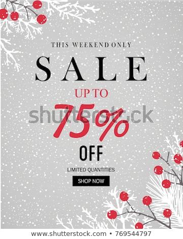 Végső karácsony vásár ünnep árengedmény vektor Stock fotó © robuart