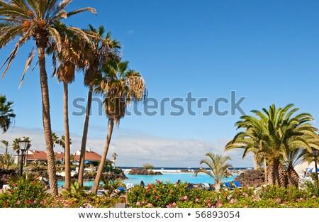 表示 地中海 海 スペイン スイミングプール 砂浜 ストックフォト © amok
