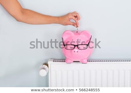 Mão moeda piggy bank radiador homem salvar Foto stock © AndreyPopov