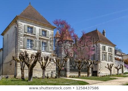 Chateau des Senechaux in Bourdeilles, France Stock photo © borisb17