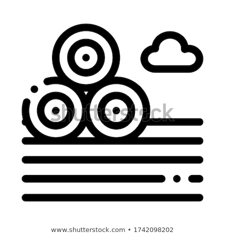 Grond icon vector schets illustratie teken Stockfoto © pikepicture