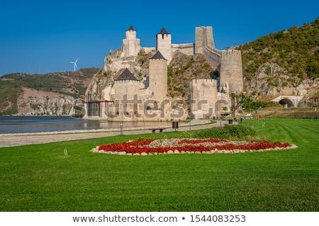 中世 · 牙城 · 丘 · ルーマニア · 壁 - ストックフォト © igabriela