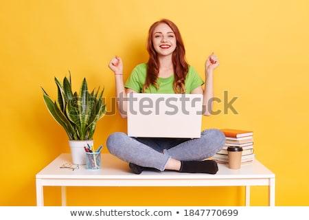 少女 ポーズ 黄色 壁 花 インド ストックフォト © absoluteindia