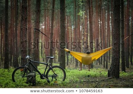 アクティブ 木材 女性 を実行して パス ストックフォト © fotorobs
