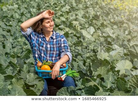 женщину · овощей · модель · фрукты · спортзал - Сток-фото © photography33