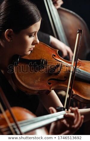 muzikant · ontspannen · home · viool · man - stockfoto © photography33