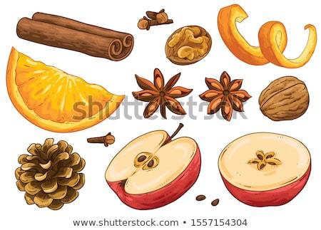 Yalıtılmış elma tarçın anason meyve arka plan Stok fotoğraf © M-studio
