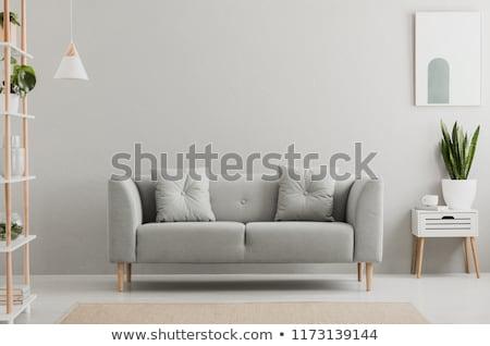 Otthon belső fürdőszoba épületbelsők terv építészet Stock fotó © samsem