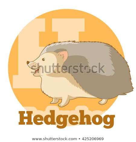 Hedgehog2 Stock photo © smuki