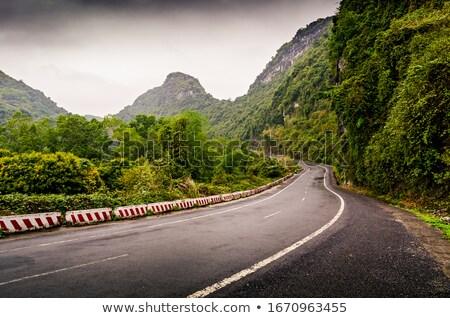 Drogowego wapień góry asia drzewo górskich Zdjęcia stock © Juhku