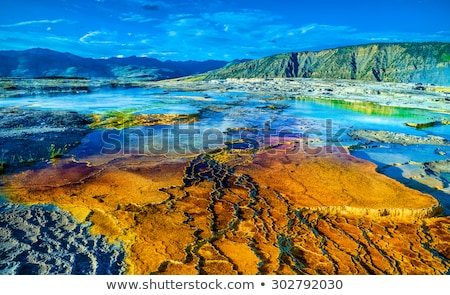 Mammoth Hot Springs Yellowstone Wyoming Stock photo © billperry