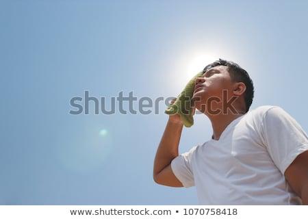 chaud · soleil · thermomètre · température · chaleur · vague - photo stock © adrenalina
