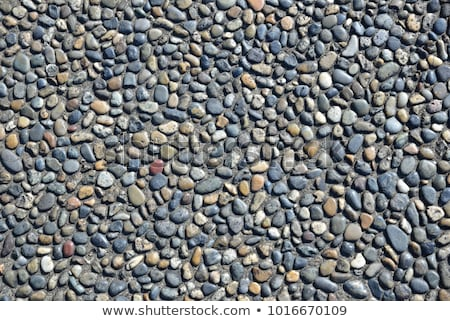 Grey Pebble Stones Stock photo © manfredxy