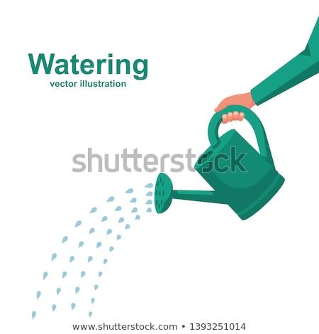 Sulama Metal yeşil ot çiçek su çalışmak Stok fotoğraf © timurock