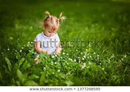 Kız yeşil ot çekici kız rahatlatıcı çim alanı bahar Stok fotoğraf © justinb