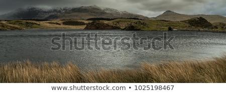Rustig meer park berg Stockfoto © chrisga