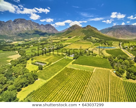 Cape Town South Africa gebouw tuin berg zomer Stockfoto © Vividrange
