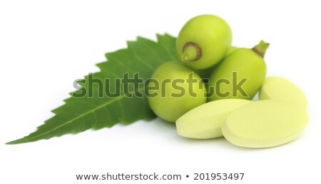 Medicinal neem fruits with tablets Stock photo © bdspn