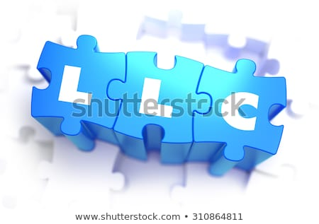 LLC - White Word on Blue Puzzles. Stock photo © tashatuvango