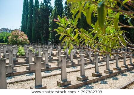 serbian world war one military cemetery thessaloniki stock photo © nessokv