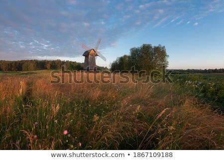 windmills and a pathway Stock photo © jaffarali