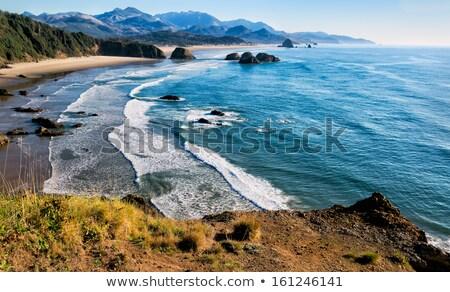 Sea coast with waves, wide angle Stock photo © Paha_L