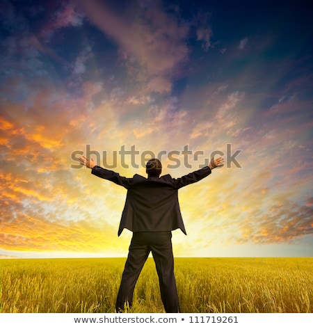 businessman standing with hands up on the meadow stock photo © paha_l