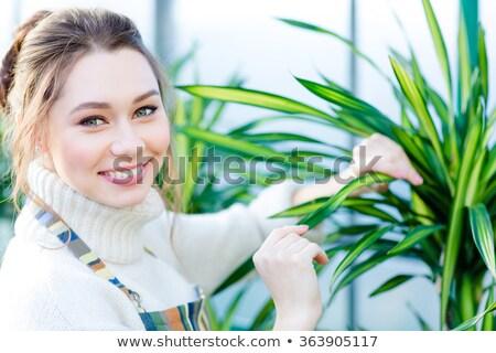 Jolie femme jardinier soins rayé Photo stock © deandrobot